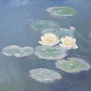 Etude de programmation pour la restructuration et l'extension du musée Marmottan – Monet à Paris