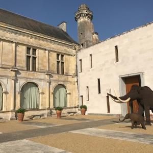 Etude d'optimisation de l'exploitation des monuments et musées départementaux de l'Indre et Loire